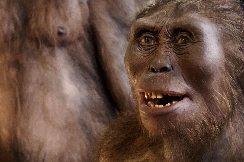 naturhistorisches-museum-erste-menschen